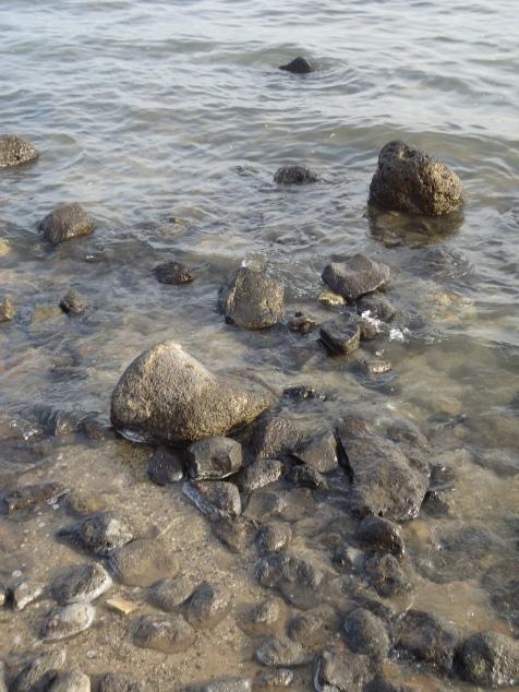 Sea of Galilee (2).JPG